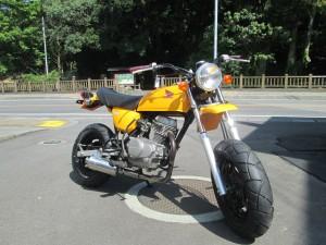 NO.707 Ape Yellow 003